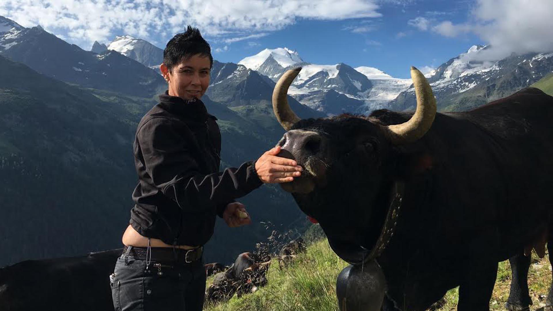 certificado de empleador bolivia profesor de youtube premio nobel